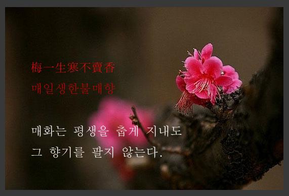신흠의-시_00001.jpg